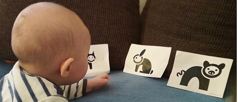 Černobílé obrázky pro miminka zdarma – aneb Pieráčci se představují nejmenším